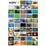 MAXI POSTER (61cm x 91.5cm) - SMILEY GALLERY - Poster