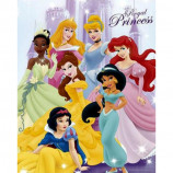 MINI POSTER (40cm x 50cm) - DISNEY PRINCESS : PRINCESSES - Poster
