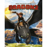 MINI POSTER (40cm x 50cm) - HOW TO TRAIN YOUR DRAGON 2 : ROCKS - Poster