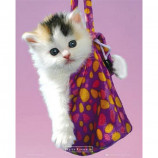 MINI POSTER (40cm x 50cm) - KEITH KIMBERLIN : KITTEN IN A BAG - Poster