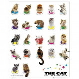 MINI POSTER (40cm x 50cm) - THE CAT : COLOURS - Poster