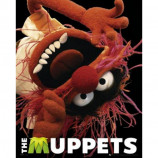 MINI POSTER (40cm x 50cm) - THE MUPPETS : ANIMAL - Poster