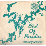 SNOWY WHITE - BIRD OF PARADISE - 12 Inch