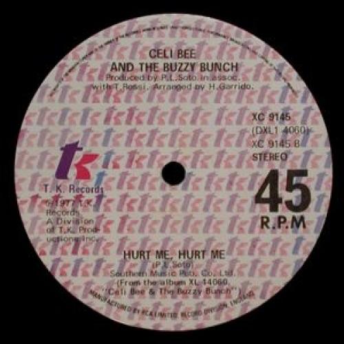 """Celi Bee & The Buzzy Bunch - One Love / Hurt Me, Hurt Me - 12'' - Vinyl - 12"""""""