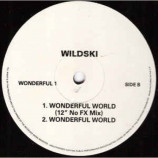 Wildski - What A Wonderful World