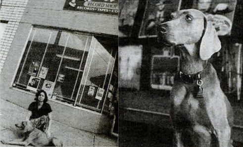 The Story Lucy S Record Shop Nashville Tn Vinylom